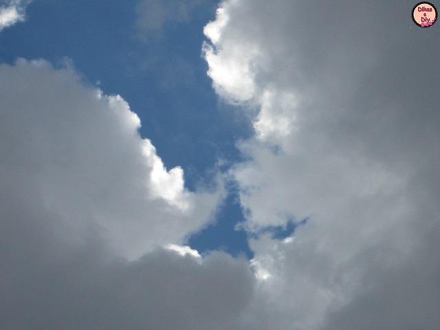 Fotografia -A colecionadora de nuvens Blog- Dikas e diy