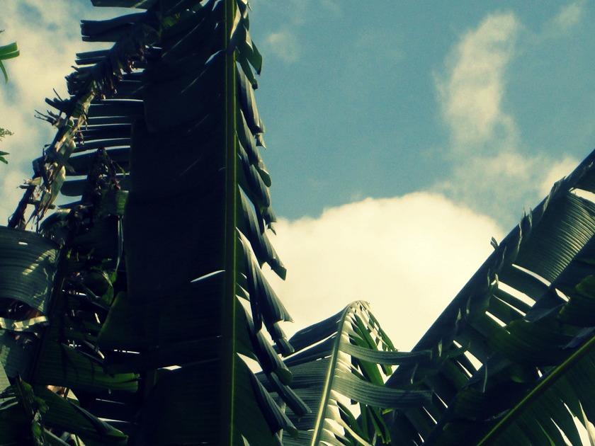 Fotografia- A colecionadora de nuvens -Blog Dikas e diy