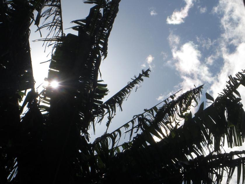 Fotografia - A colecionadora de nuvens- vento - Blog Dikas e diy