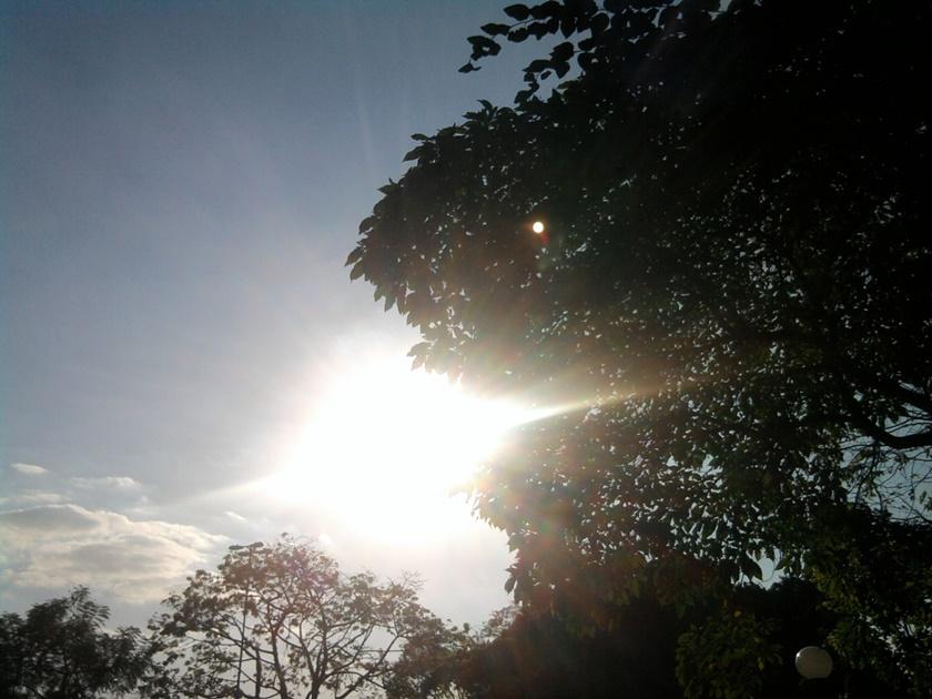 fotografando-sol-sun-arvores-tree-ceu-sky-blog-dikas-e-diy