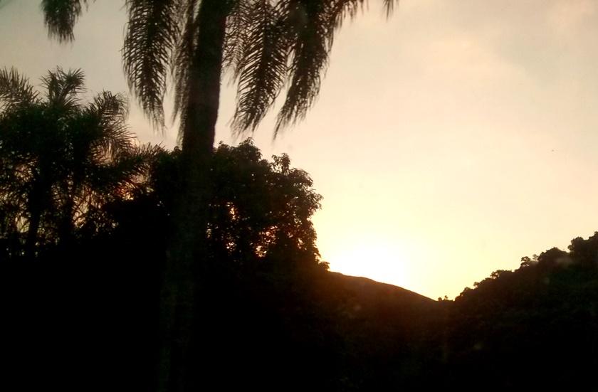 Fotografando - pôr do sol - sunset- sol sun - árvores ´tree-céu -cielo- sky-final de tarde -fim de tarde Blog -Dikas e diy
